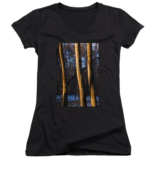 Women's V-Neck T-Shirt (Junior Cut) featuring the photograph The Three Graces by Davorin Mance