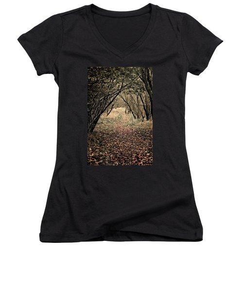 The Walk Women's V-Neck T-Shirt (Junior Cut) by Meirion Matthias