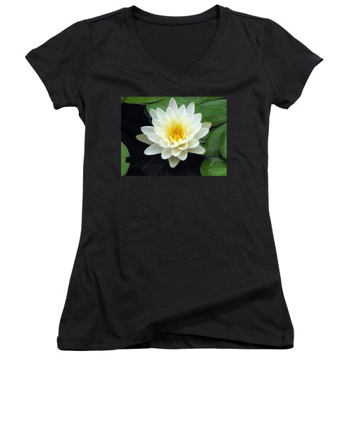 Women's V-Neck T-Shirt (Junior Cut) featuring the photograph The Water Lilies Collection - 02 by Pamela Critchlow