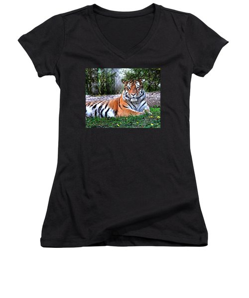 Women's V-Neck T-Shirt (Junior Cut) featuring the photograph Tiger 2 by Marty Koch