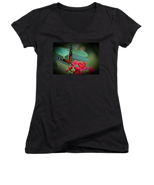 Tiger Longwing Butterfly Women's V-Neck T-Shirt