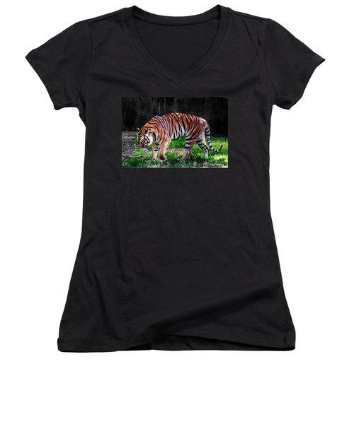 Tiger Tale Women's V-Neck