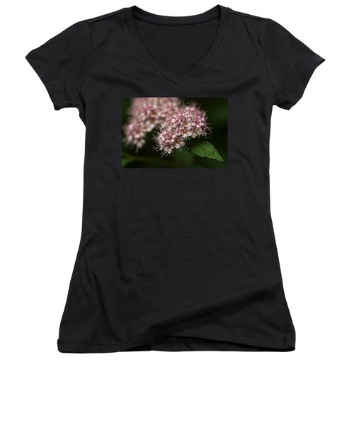 Tiny Flowers Women's V-Neck T-Shirt