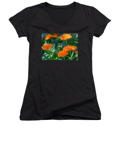 Touch By Light Women's V-Neck