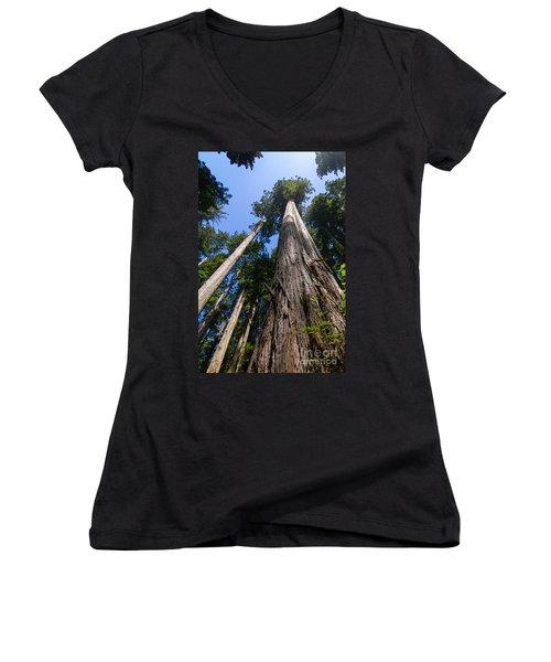 Towering Redwoods Women's V-Neck T-Shirt (Junior Cut) by Paul Rebmann