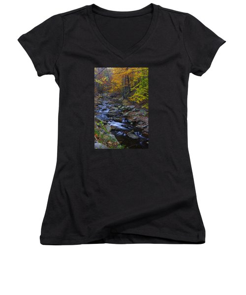 Tracking Color - Big Hunting Creek Catoctin Mountain Park Maryland Autumn Afternoon Women's V-Neck (Athletic Fit)