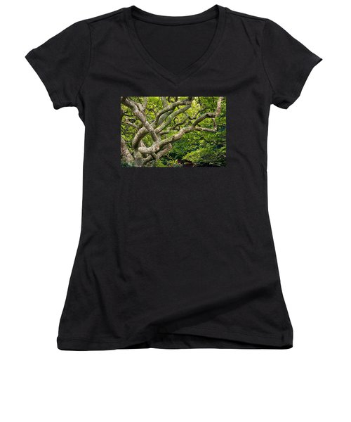 Tree #1 Women's V-Neck