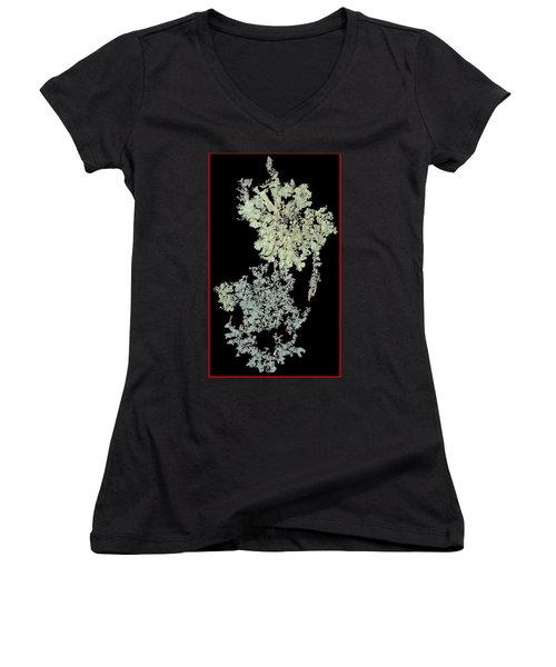 Tree Fungus Women's V-Neck