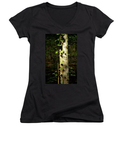 Tree In The Woods Women's V-Neck T-Shirt