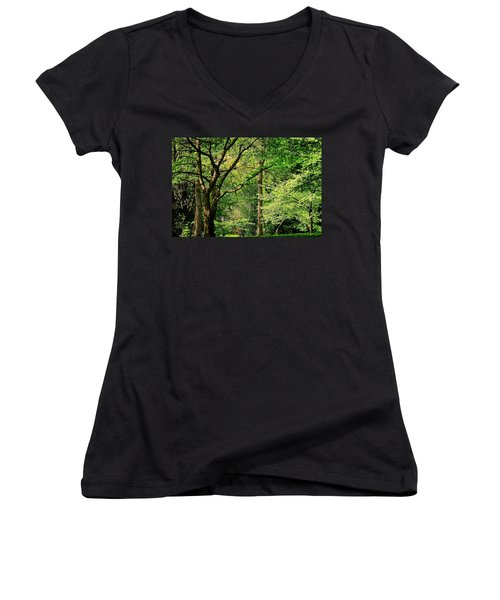 Women's V-Neck T-Shirt (Junior Cut) featuring the photograph Tree Series 3 by Elf Evans