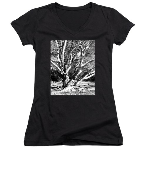 Tree Study In Black N White Women's V-Neck