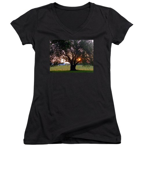 Tree With Fence. Women's V-Neck T-Shirt