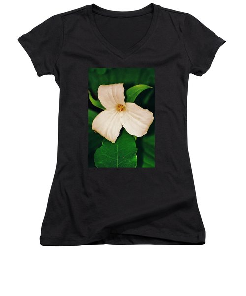 Trillium Women's V-Neck T-Shirt (Junior Cut) by Daniel Thompson