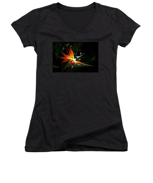 Tropical Bloom Women's V-Neck T-Shirt
