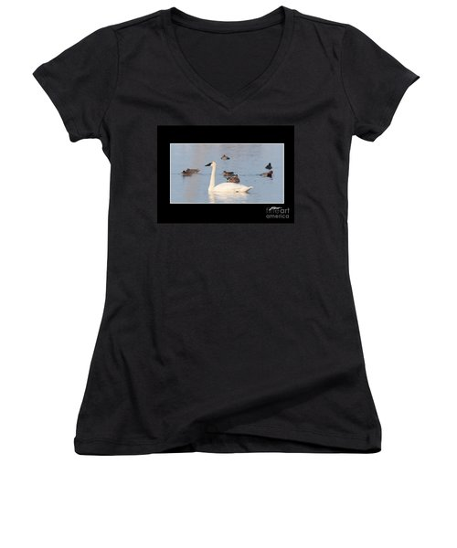 Trumpeter Swan Women's V-Neck (Athletic Fit)