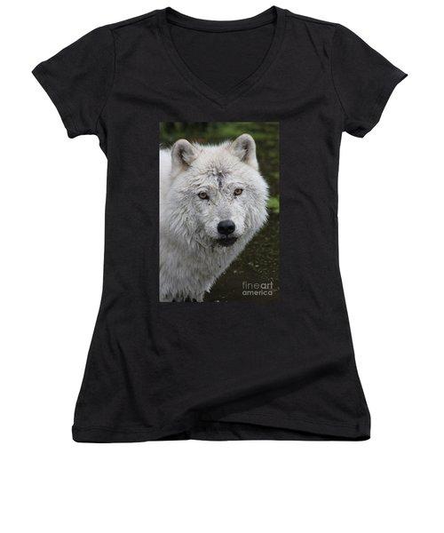 Trusting Women's V-Neck T-Shirt