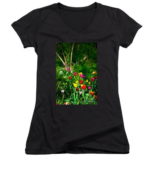 Tulip Rainbow Women's V-Neck