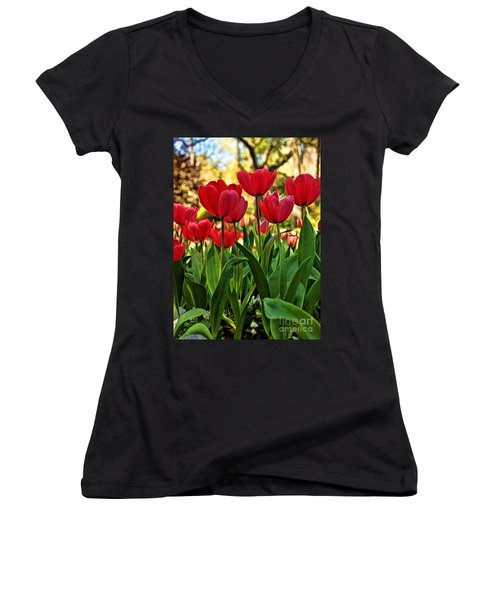 Tulip Time Women's V-Neck T-Shirt (Junior Cut) by Peggy Hughes