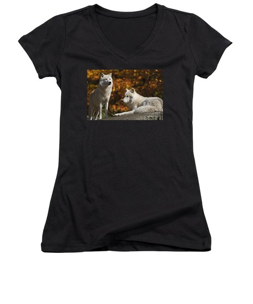 Women's V-Neck T-Shirt (Junior Cut) featuring the photograph Two Arctic Wolves On Rock Hill by Wolves Only