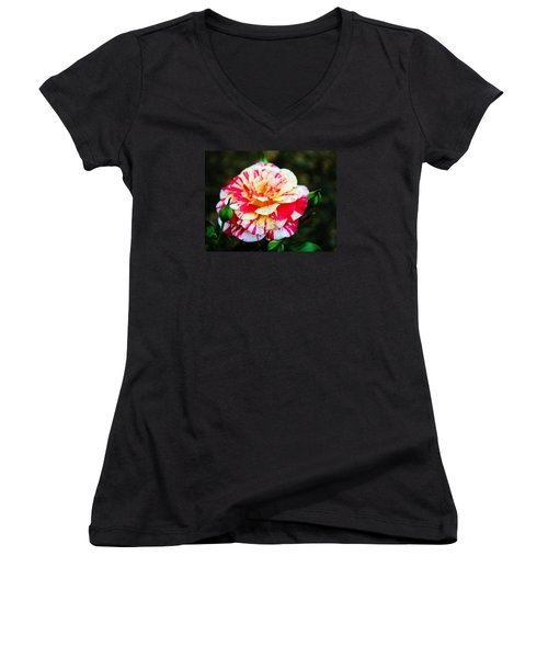 Two Colored Rose Women's V-Neck