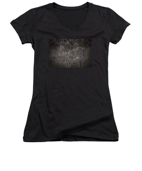 Two Deer Hiding Women's V-Neck T-Shirt (Junior Cut) by Bradley R Youngberg
