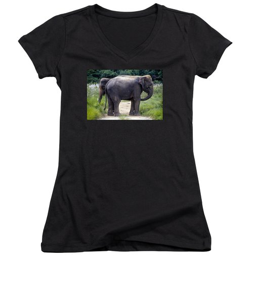 Two Elephants Women's V-Neck (Athletic Fit)