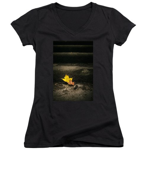 Two Leaves On A Staircase Women's V-Neck (Athletic Fit)
