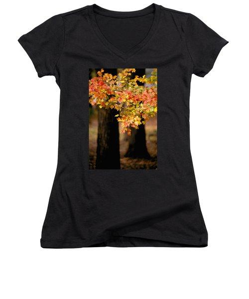 Two Trees Women's V-Neck