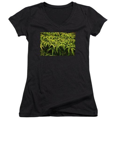 Uluhe Fern II Women's V-Neck T-Shirt