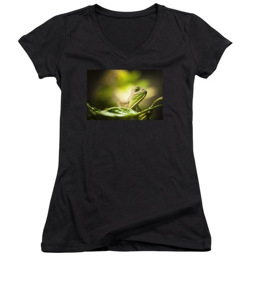 Veiled Chameleon Is Watching You Women's V-Neck T-Shirt (Junior Cut) by Bradley R Youngberg
