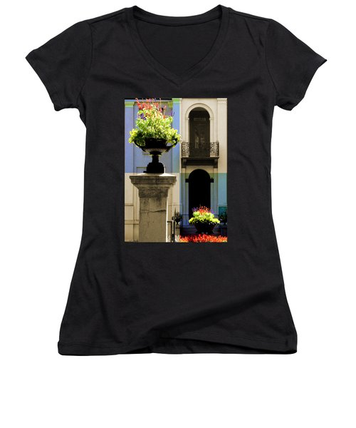 Victorian House Flowers Women's V-Neck