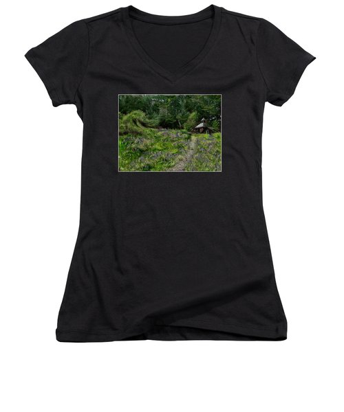 A Lupine Tale  Vincents View Women's V-Neck