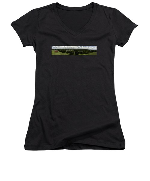 Vineyard On Keuka Lake Women's V-Neck T-Shirt (Junior Cut) by Richard Engelbrecht