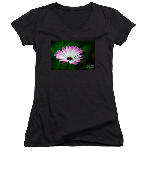 Violet And White Flower Petals With Yellow Stamens Blossoms  Women's V-Neck T-Shirt