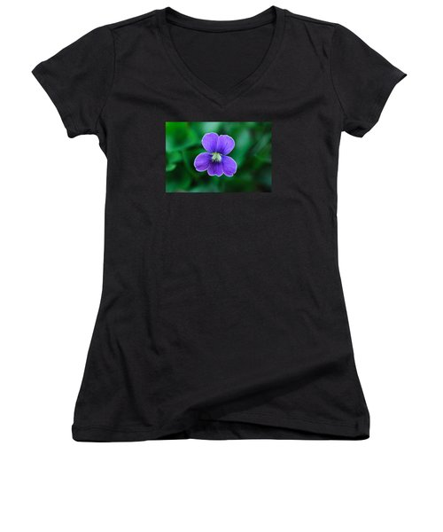 Women's V-Neck T-Shirt (Junior Cut) featuring the photograph Violet Splendor by Julie Andel