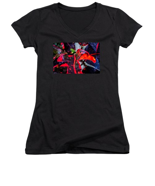 Visions Of Red Women's V-Neck T-Shirt