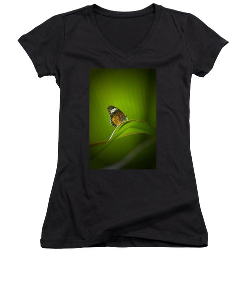 Visitor Women's V-Neck T-Shirt