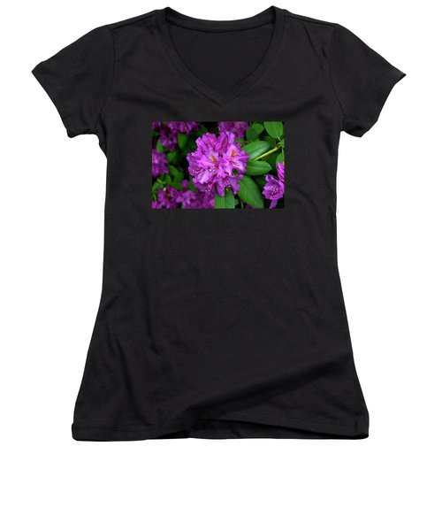 Washington Coastal Rhododendron Women's V-Neck T-Shirt (Junior Cut) by Ed  Riche