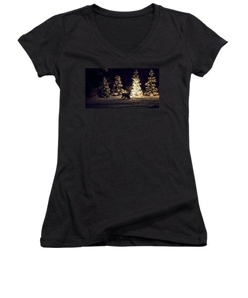 Watchful Eye Women's V-Neck T-Shirt (Junior Cut) by Aaron Aldrich