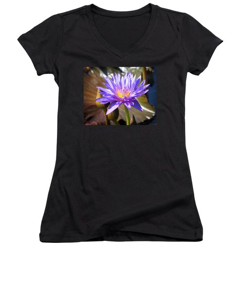 Women's V-Neck T-Shirt (Junior Cut) featuring the photograph Water Flower 1004d by Marty Koch