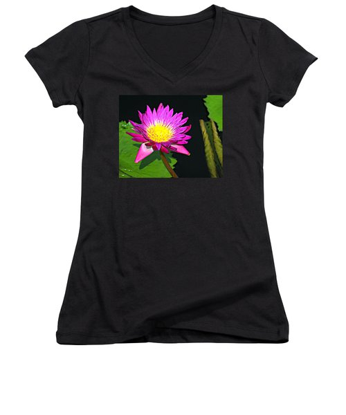 Women's V-Neck T-Shirt (Junior Cut) featuring the photograph Water Flower 10089 by Marty Koch