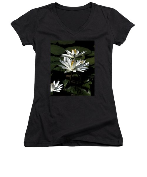 Water Lilies Women's V-Neck T-Shirt (Junior Cut) by John Freidenberg