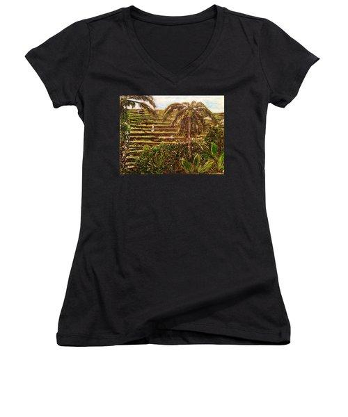 We Work Hard For The Money Women's V-Neck T-Shirt (Junior Cut) by Belinda Low