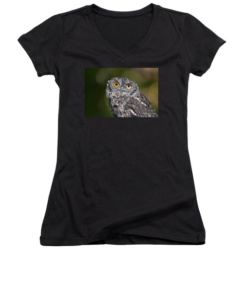 Western Screech Owl No. 3 Women's V-Neck (Athletic Fit)