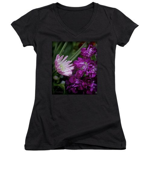 Whimsical Passion Women's V-Neck T-Shirt (Junior Cut) by Jeanette C Landstrom