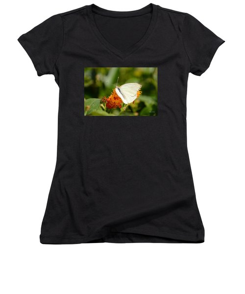 White Butterfly On Mexican Flame Women's V-Neck T-Shirt (Junior Cut) by Debra Martz