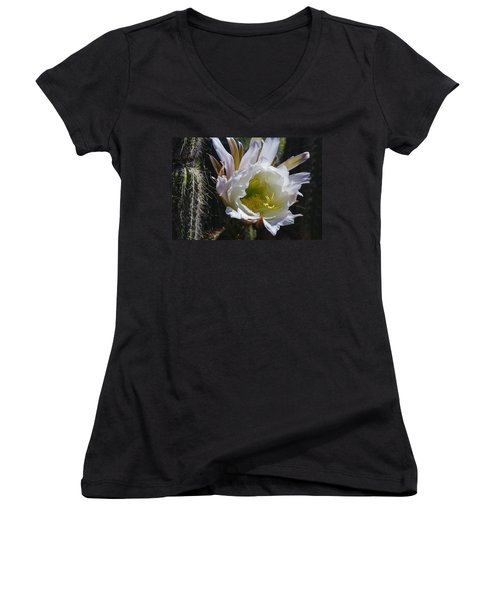White Cactus Bloom Women's V-Neck T-Shirt