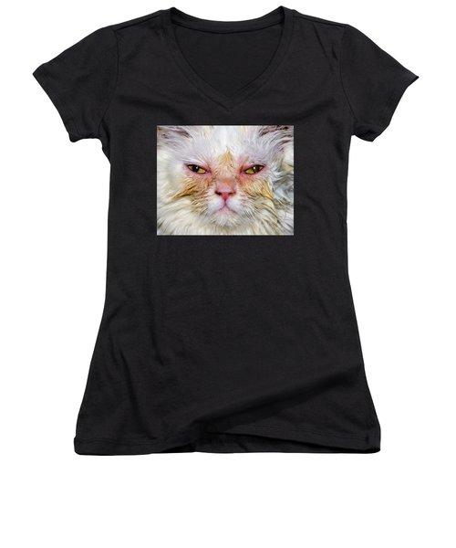 Scary White Cat Women's V-Neck
