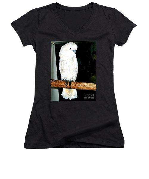 White Cockatiel-loreto Mx. Women's V-Neck T-Shirt (Junior Cut) by Jay Milo