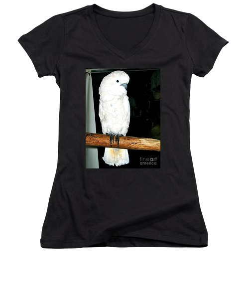 White Cockatiel-loreto Mx. Women's V-Neck T-Shirt